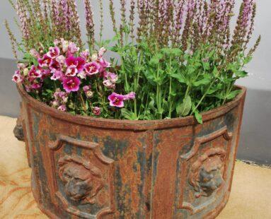 victorian cast iron planter garden