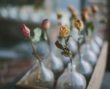 glass bottles decorative